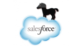 Zeus Found Crawling through Salesforce.com