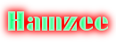 hamzee211