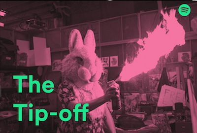 tip off bunny (1).jpg